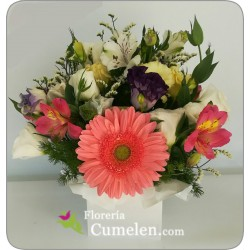 321 | Floral arrangement in box