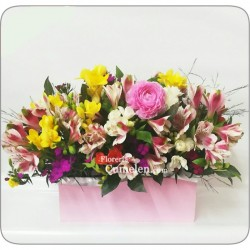 303 | Floral design in box