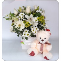 622 | Arrangement in box and bear
