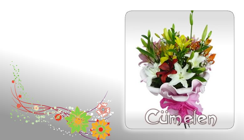 Bouquet of Liliums Spring Special
